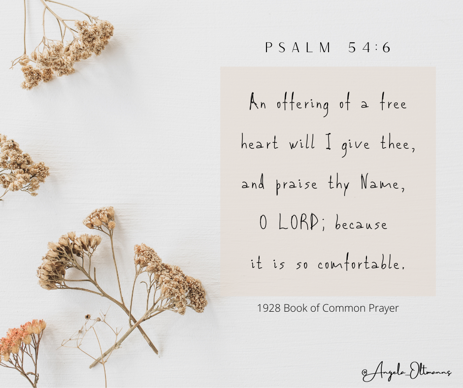 Read more about the article Prayer for pain and healing – Psalm 54:6